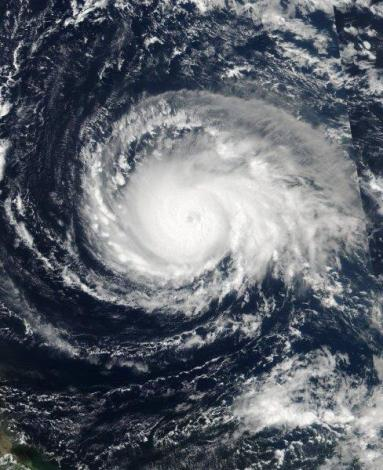 Irma4